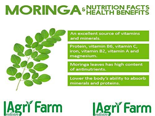 Moringa Leaves (Dried) - Indian Agri Farm